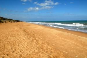 Looking North up Ninety Mile Beach - Paradise Beach